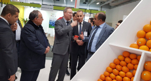 Algérie à Fruit Logistica 7